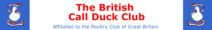 British Call Duck Club